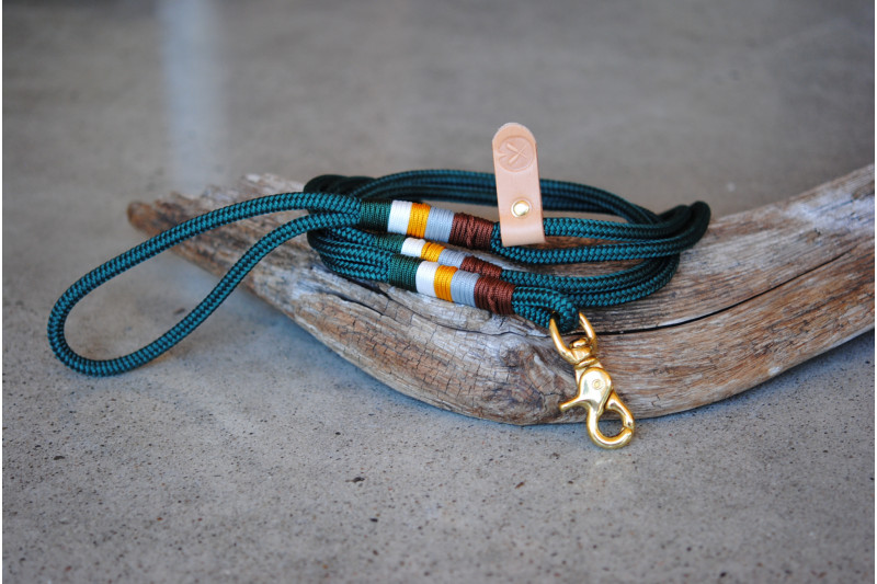 Small dog Leash Green/Goldfinch