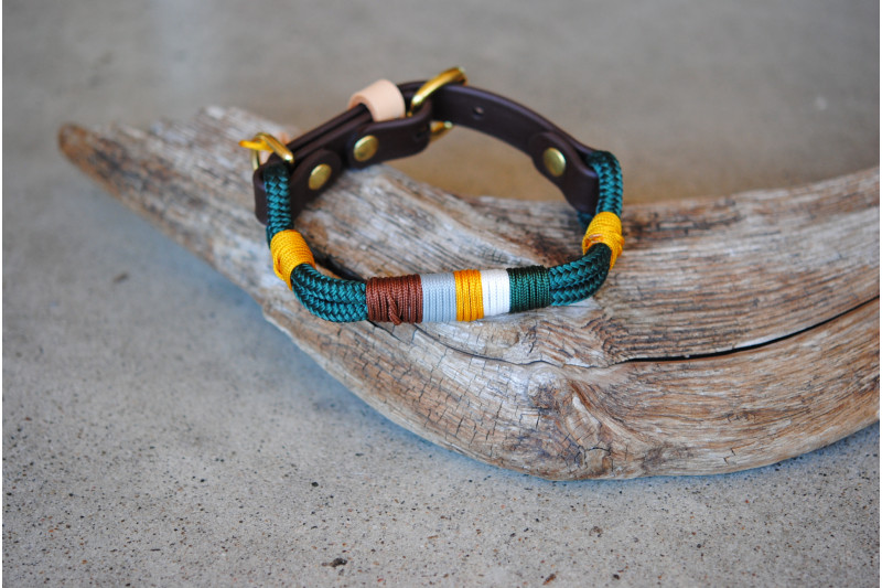 Adjustable collar for small dog Green/Goldfinch